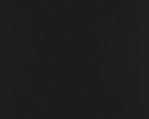 EAL 2393 BFL Black Hide