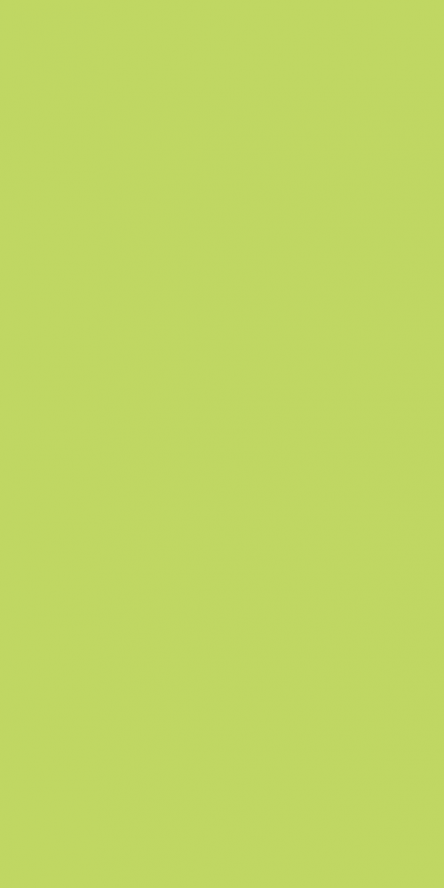 BSE 2181 S - Lime High Pressure Laminate (HPL), Billiona Enterprise Singapore