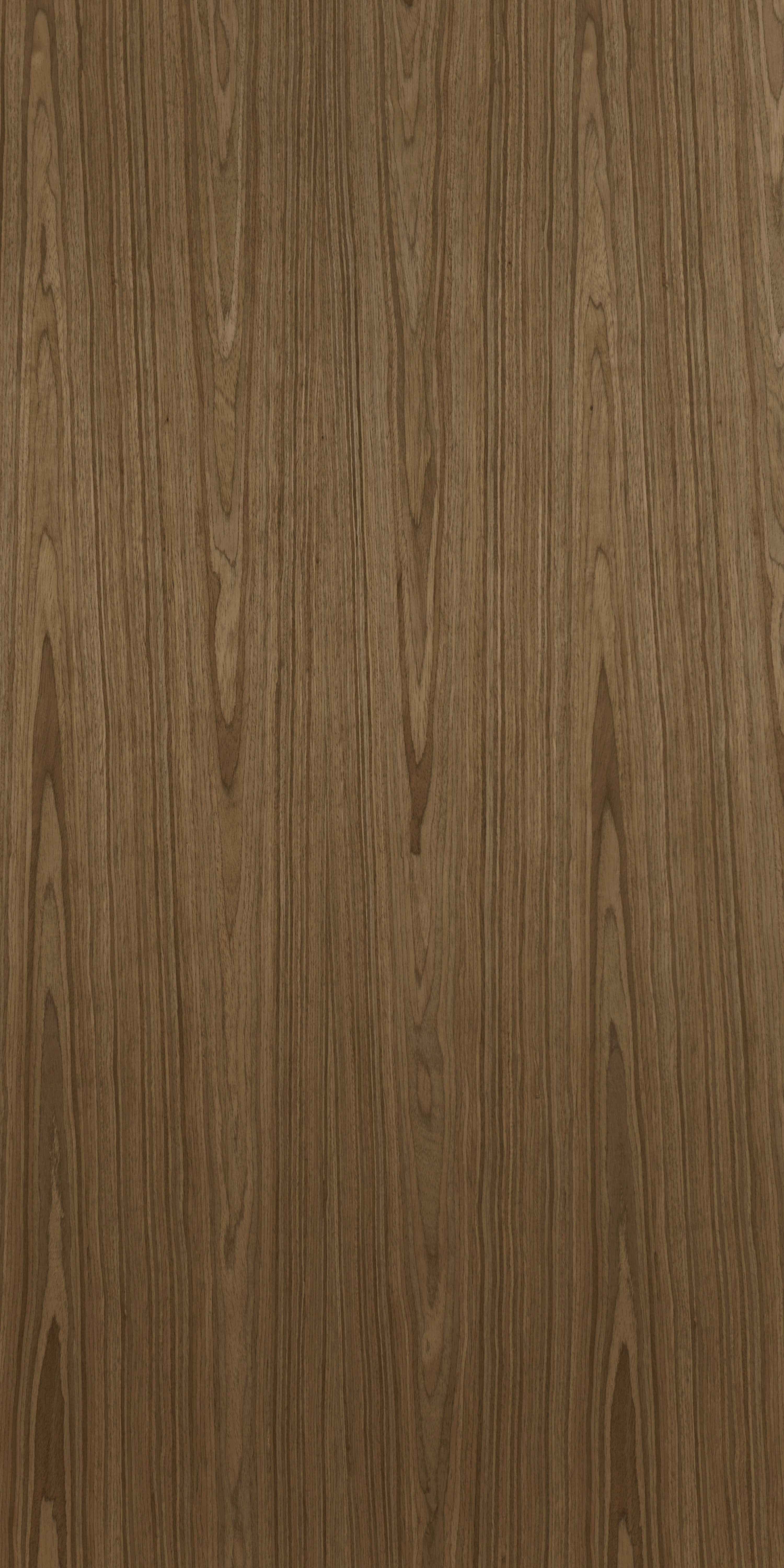 231 Recon African Walnut Veneer Plywood, Billiona Enterprise Singapore