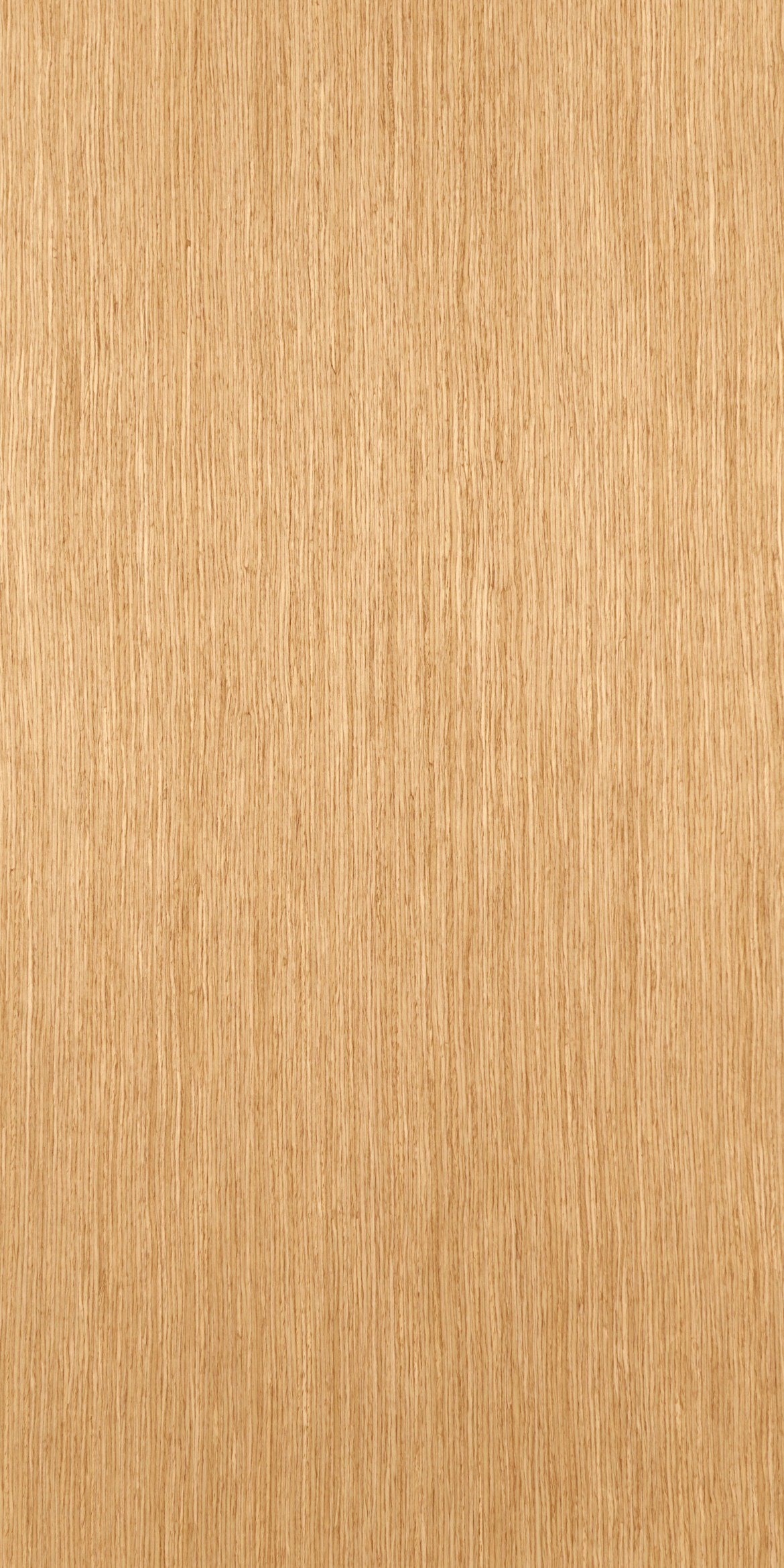 265 Recon American Oak Veneer Plywood Billiona Enterprise