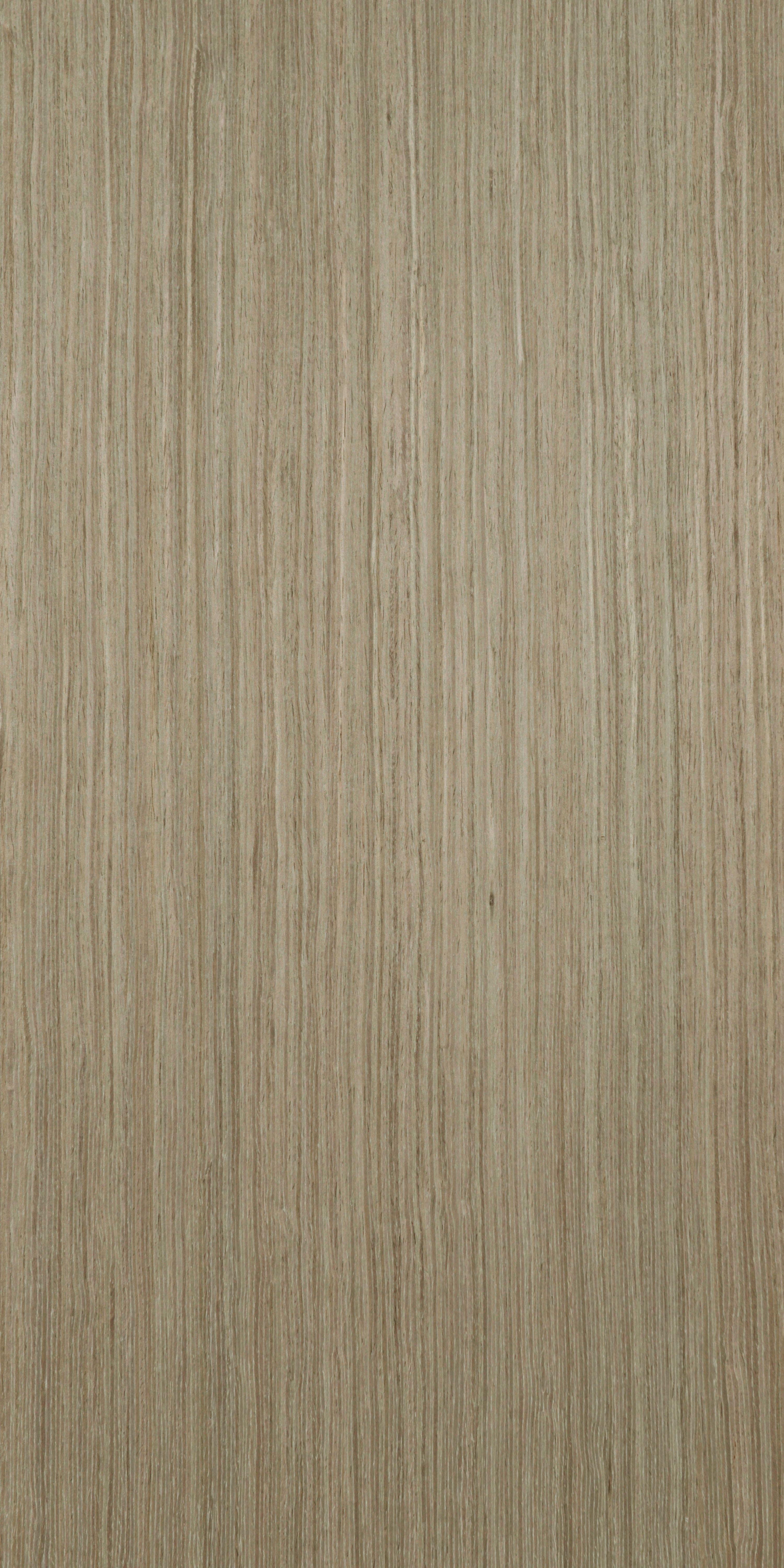 828 Recon Olive Oak Veneer plywood, Billiona Enterprise Singapore