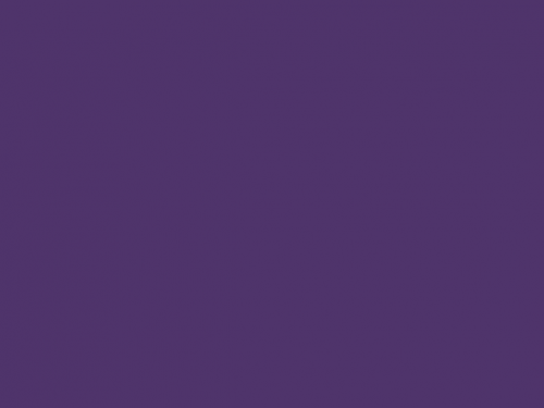 BSE 2184 S - Purple