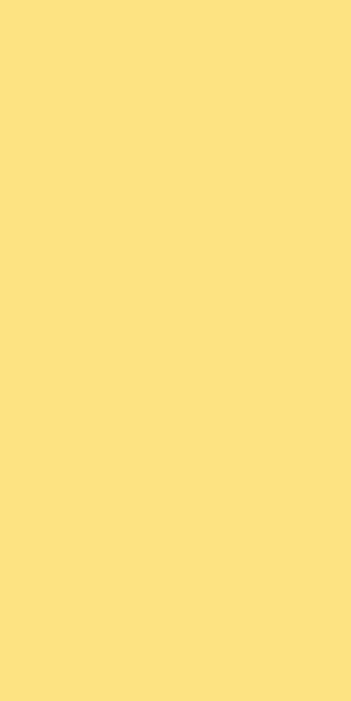 ESD 2231 S – Lemon