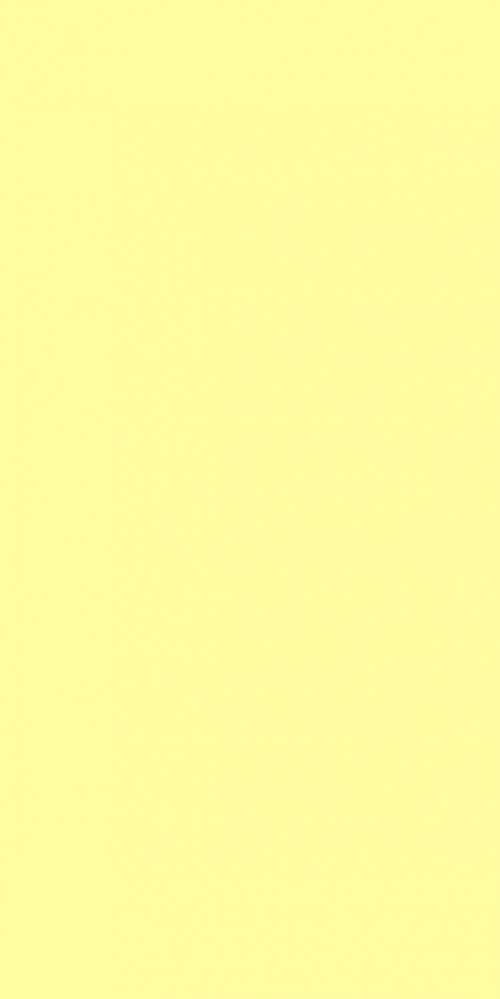 ESE 2200 S – Yellow