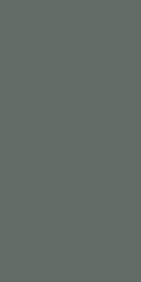 ESC 2253 S - Pastel Grey