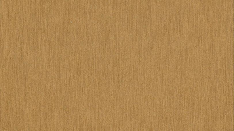 EDS 3383 - Gold Steel
