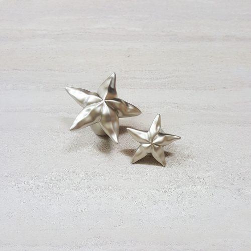 starfish-123