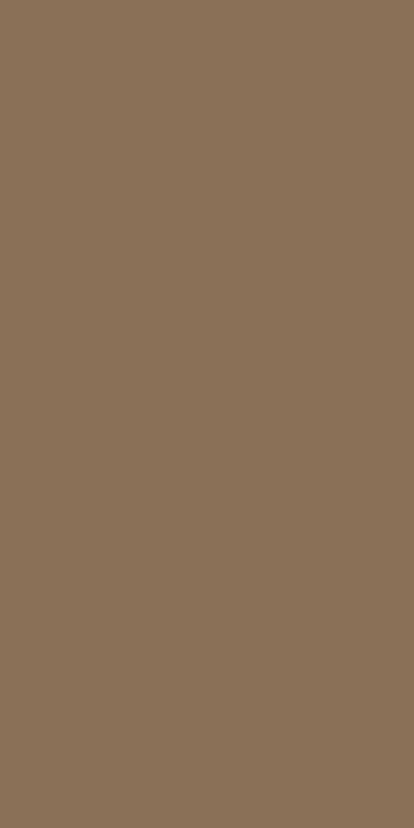 ESE 2204 S - Sand Solid Colour High Pressure Laminate